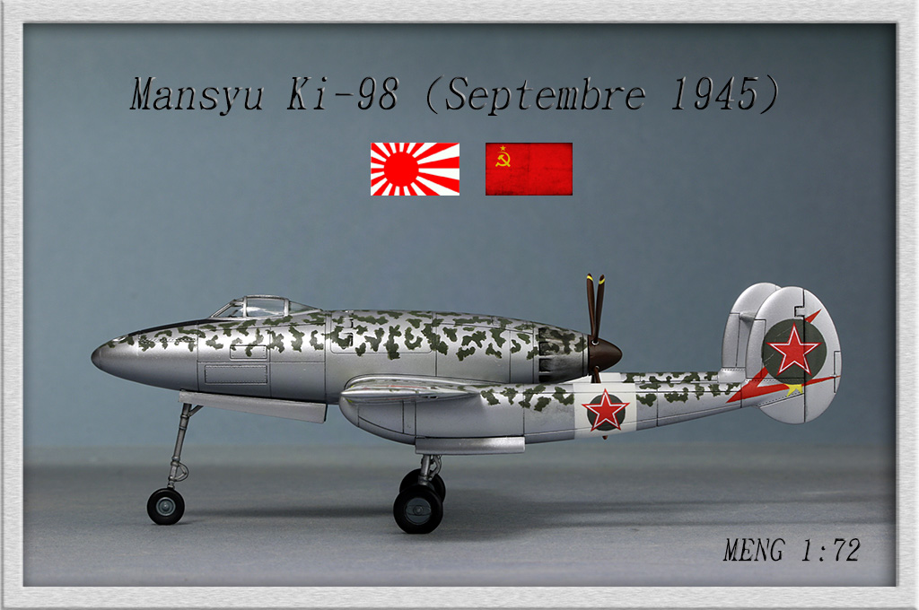 Mansyu Ki-98 Fighter (1/72, MENG)  - Page 3 Img_9519