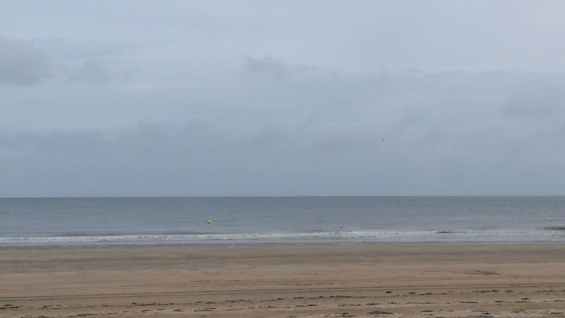 Normand Dit : en Normandie c'est parfois gris - Page 6 20160667