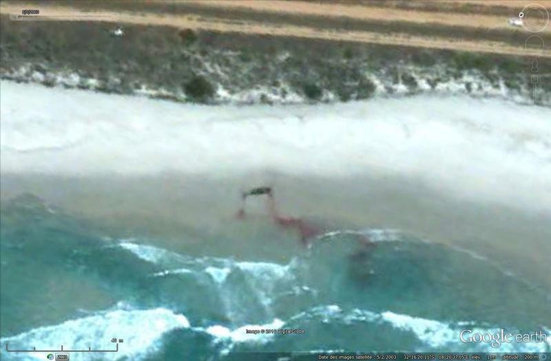 Baleine échouée - Afrique du Sud Sans_104