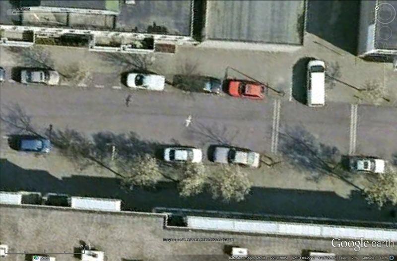 Oiseaux visibles sous Google Earth Sans_115