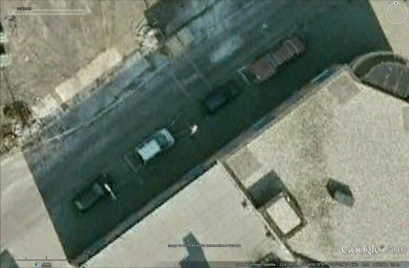 Oiseaux visibles sous Google Earth Sans_116