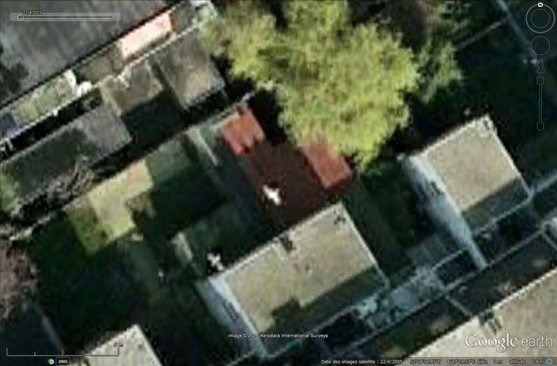 Oiseaux visibles sous Google Earth Sans_117