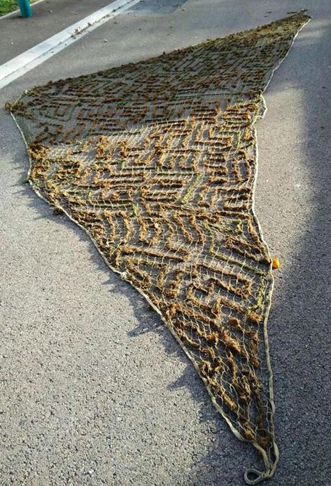 Filet camouflage triangle Allemand Captur25