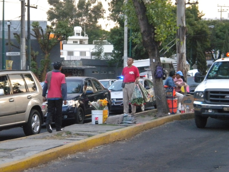 Anaya Arenzana Mariana: Movilidad cotidiana e Inmovilidad:  la Ciudad de México desde sus trayectos automovilísticos 510