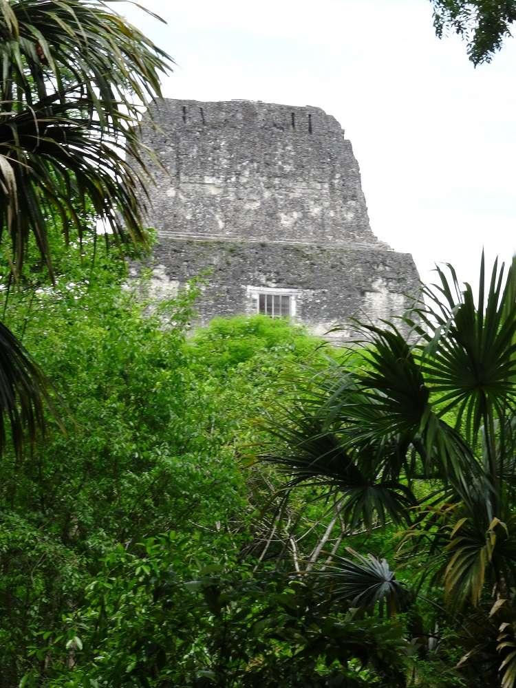 De Yavin IV à Tikal (Star Wars 4 : A New Hope et Rogue One) Dsc07312