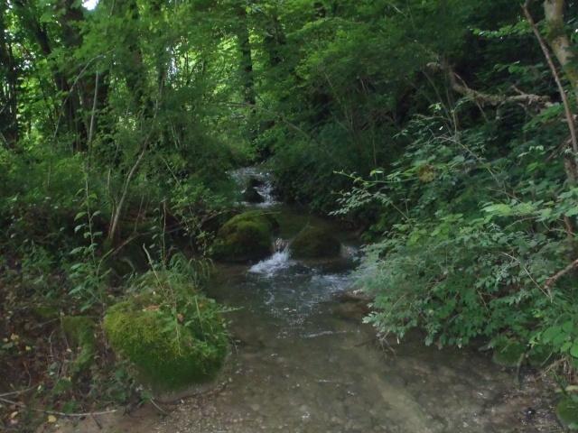 ruisseau - ruisseau en Juin toujours de l'eau P6190010