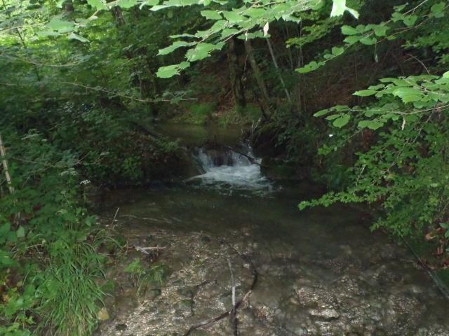 ruisseau - ruisseau en Juin toujours de l'eau P6190012