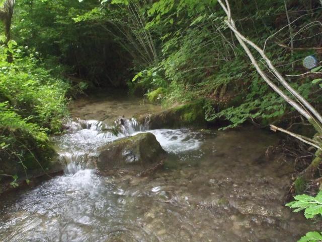 ruisseau - ruisseau en Juin toujours de l'eau P6190013