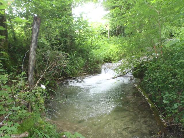 ruisseau - ruisseau en Juin toujours de l'eau P6190015