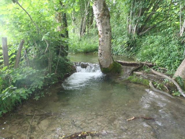 ruisseau - ruisseau en Juin toujours de l'eau P6190022