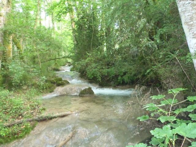 ruisseau - ruisseau en Juin toujours de l'eau P6190025