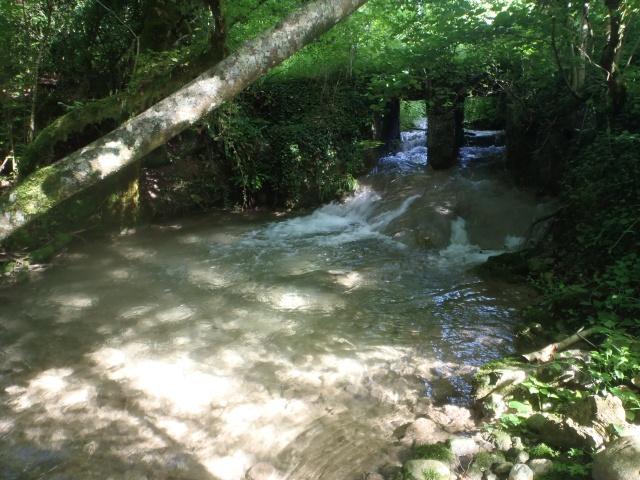 ruisseau - ruisseau en Juin toujours de l'eau P6190027