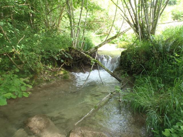 ruisseau - ruisseau en Juin toujours de l'eau P6190028