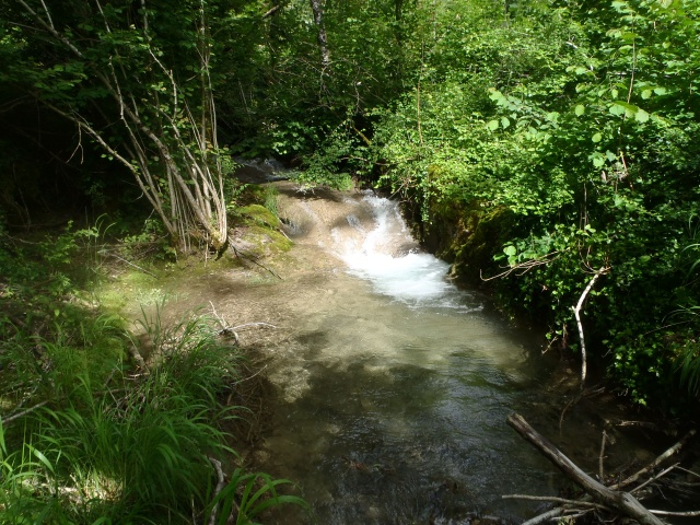 ruisseau - ruisseau en Juin toujours de l'eau P6190029