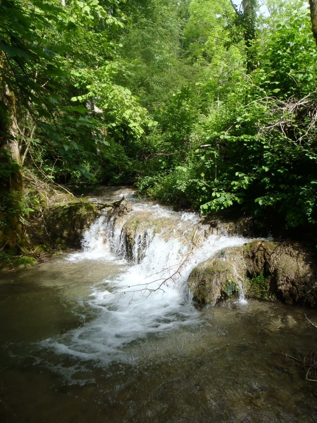 ruisseau - ruisseau en Juin toujours de l'eau P6190030