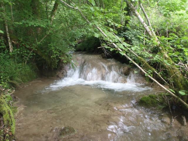 ruisseau - ruisseau en Juin toujours de l'eau P6190031