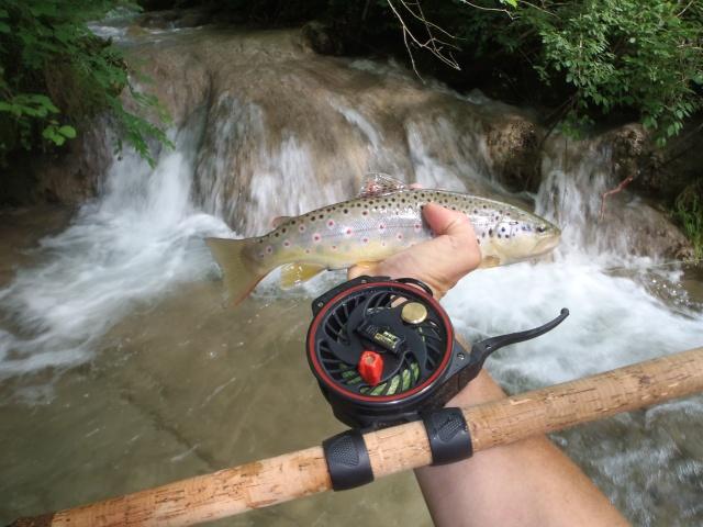 ruisseau - ruisseau en Juin toujours de l'eau P6190036