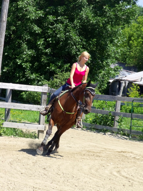 ♣ photos de vous à cheval - Page 4 Dscf4016