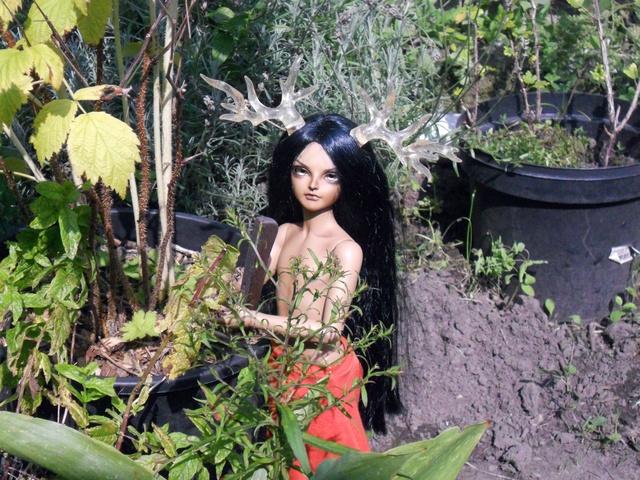 Nouvelles dolls : DimAria, LTF Ante et Lishe :) - Page 5 Jardin12