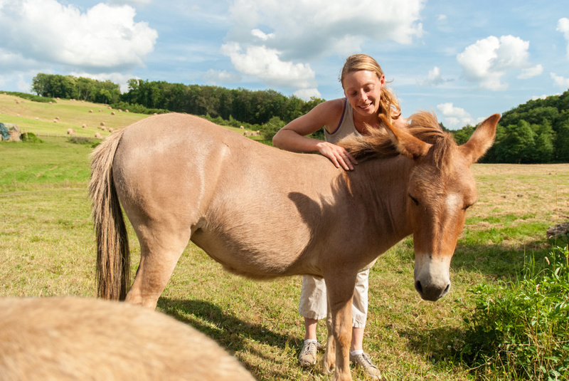 DIABLOTINE - ONC Mule née en 2014 - adoptée en juin 2016 par Amélie Dsc_0039