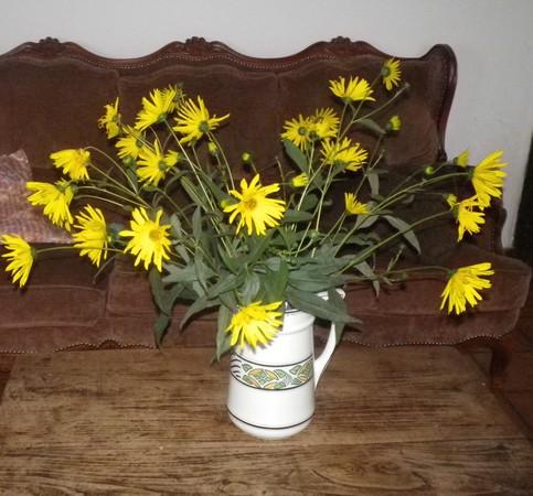 Bouquets !!! 18092026