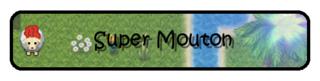 Super Mouton Banier11