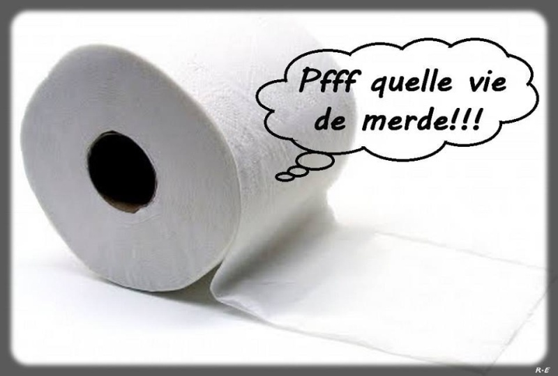 humour - Page 21 13494917