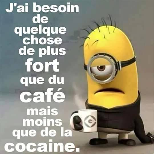 humour - Page 21 13524510