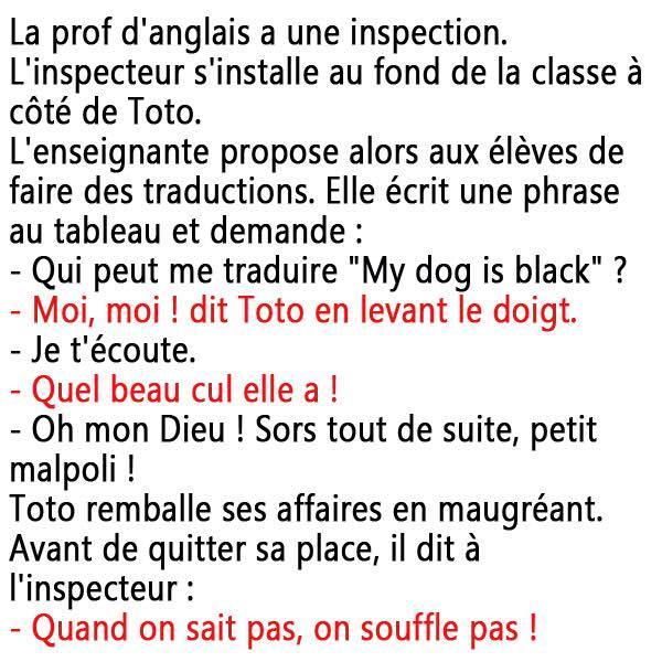 humour - Page 38 13533212
