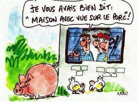 humour - Page 21 13533310