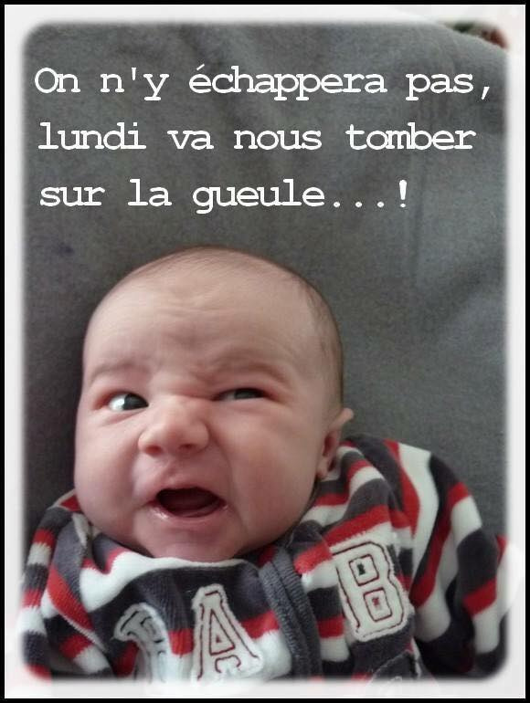 humour - Page 39 13557811