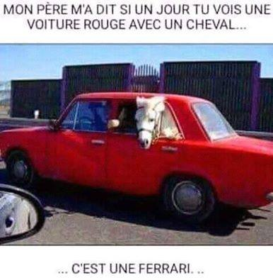 humour - Page 6 13592215