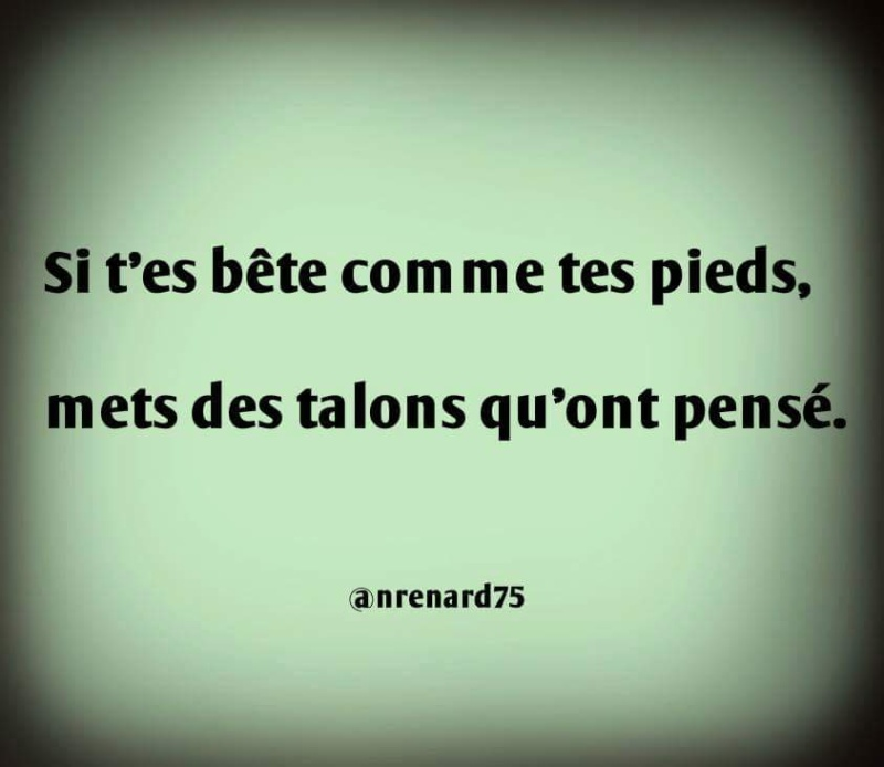 humour - Page 38 13599711