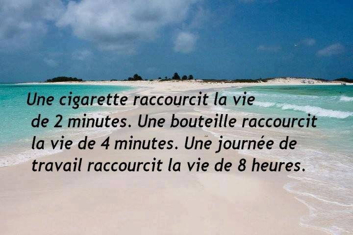 humour - Page 37 13606510