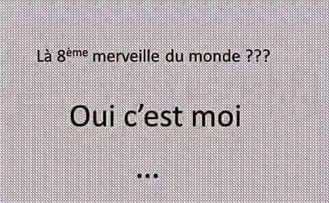 humour - Page 2 13606611