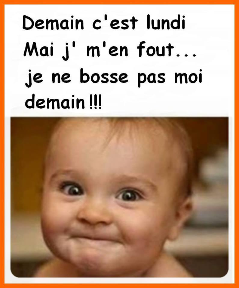 humour - Page 6 13607010