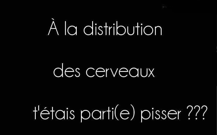 humour - Page 38 14051810