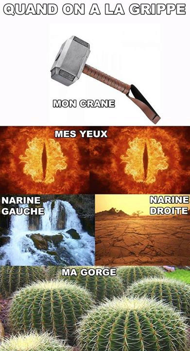 humour - Page 38 14064310