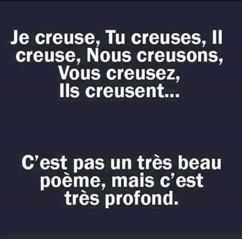 humour - Page 39 14067612