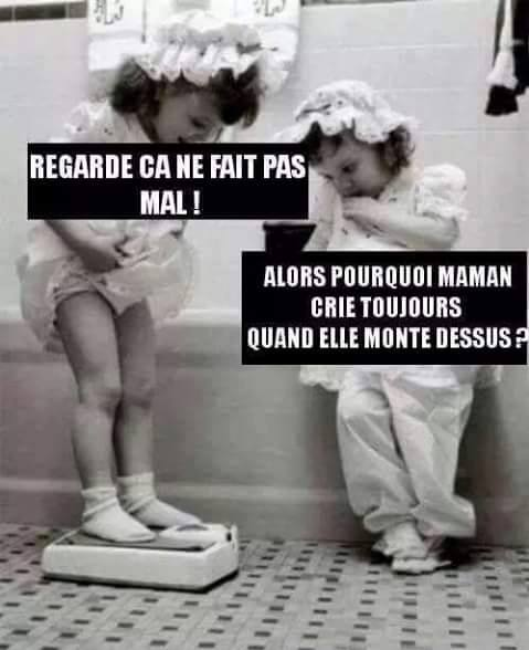 humour - Page 38 14102111