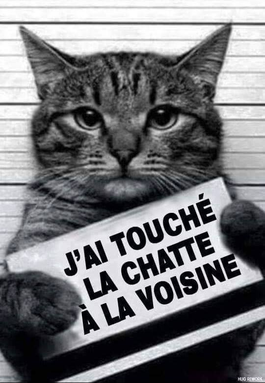 humour - Page 4 14102413