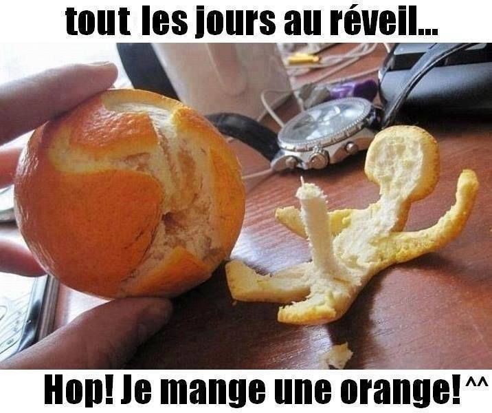 humour - Page 3 14141612