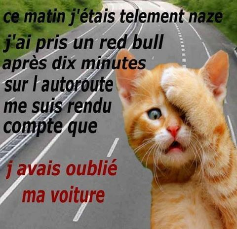 humour - Page 2 14191912