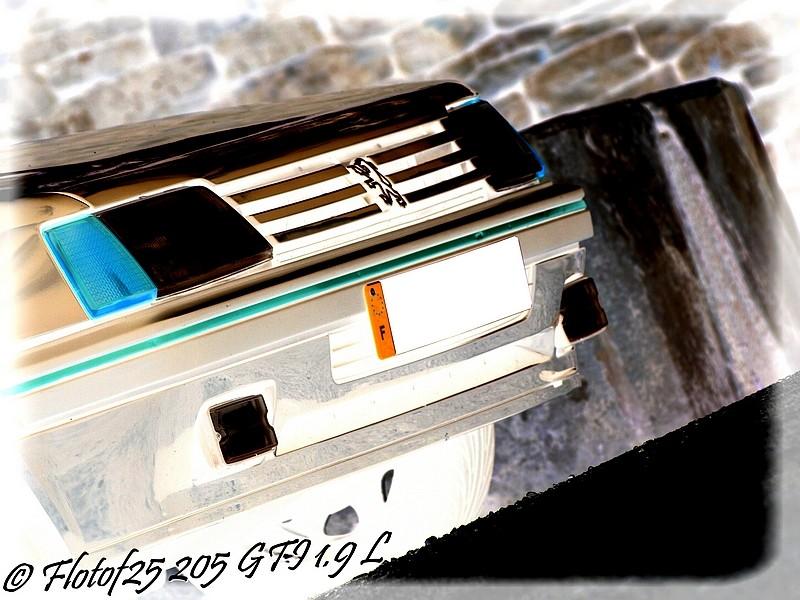 [GTI 1989] 205 GTI Suisse prépa. FG  - Page 2 P8155322