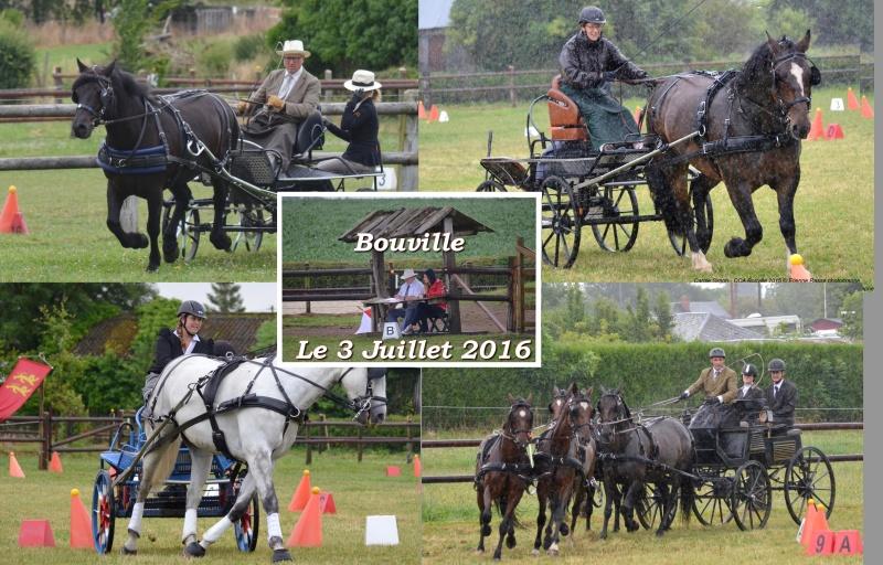 3 Juillet 2016 - CCA Bouville (76) Plaque10