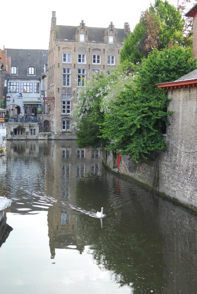 Ma balade en Belgique (06.2016) _bob2414