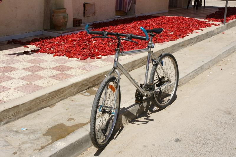 "Micmo Big Mountain ""Tunisien"" Dsc00510"