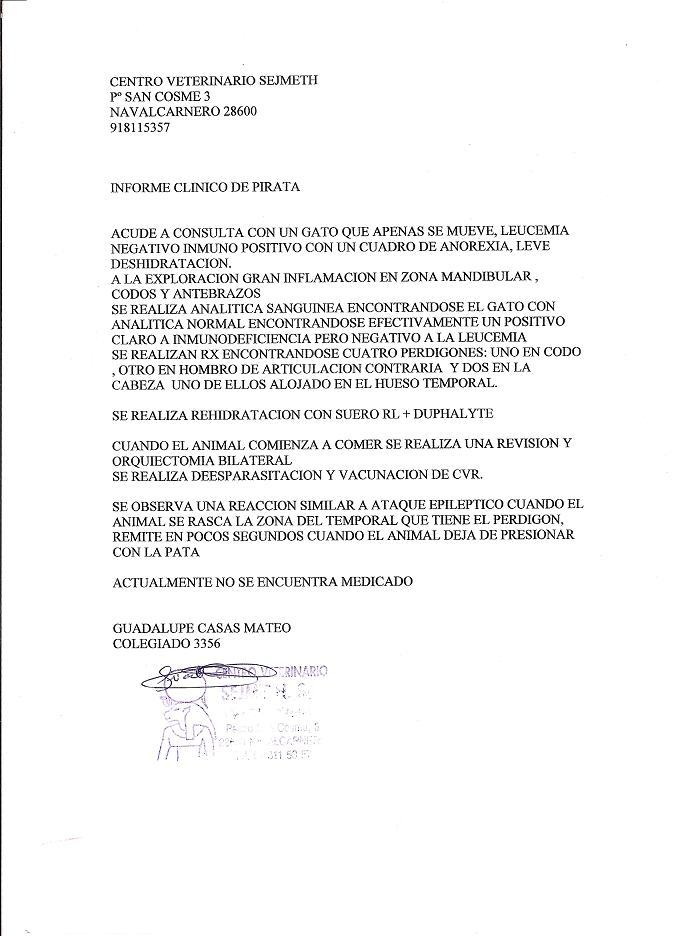 Ulises, ha pasado un calvario en la calle. AHORA NECESITA ACOGIDA MADRID Inform10