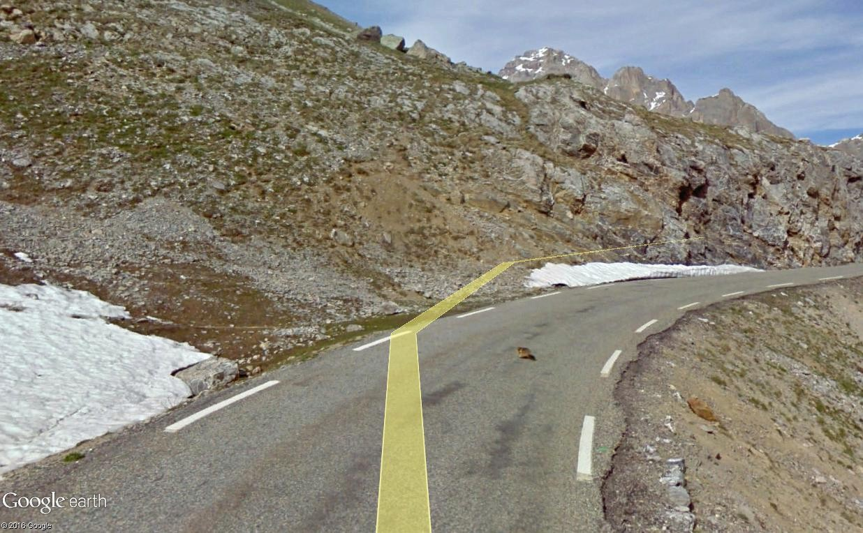 STREET VIEW : Les animaux - Page 10 Marmot10