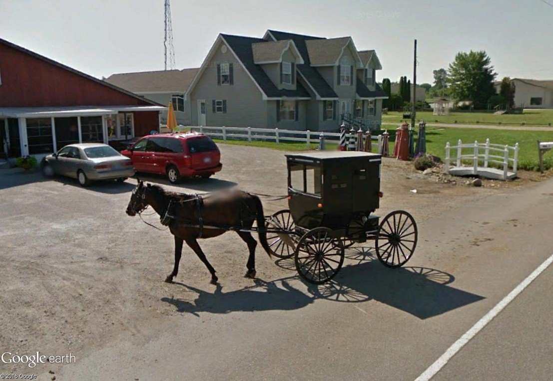 STREET VIEW : les tractions hippomobiles Mich10